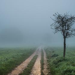 De Camino naar Santiago de Compostella