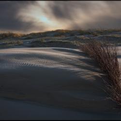 Dark side of the dune