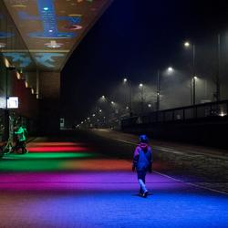 Kleuren bij nacht