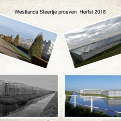 collage Westland sfeertje proeven Herfst 2018