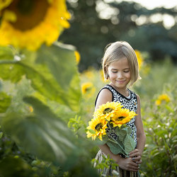 Girl with sunflowers part II