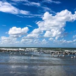 Vogels en wolken op het wad