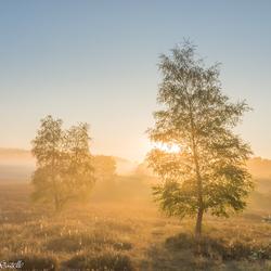 Brunssummerheide sunrise