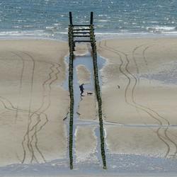 wandeling strand Dishoek met hondjes...