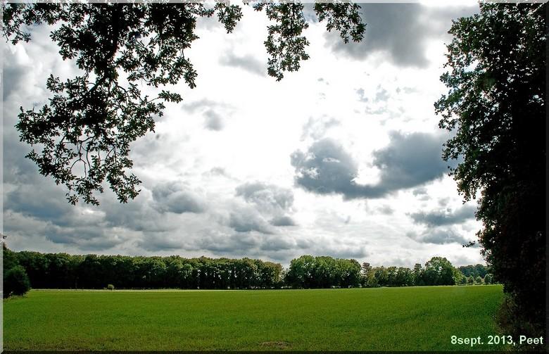Natuurgebied  - Natuurgebied, een foto van gistermiddag gemaakt in de buurt van de ginkelse heide.
