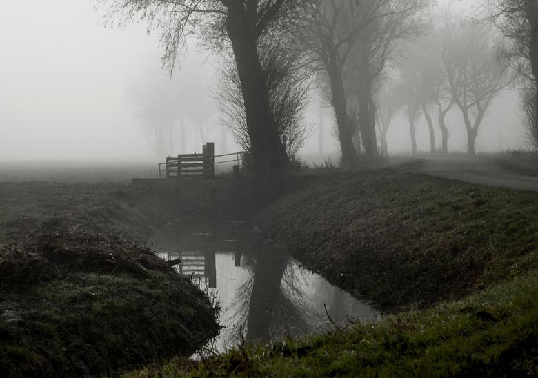 mist - mist