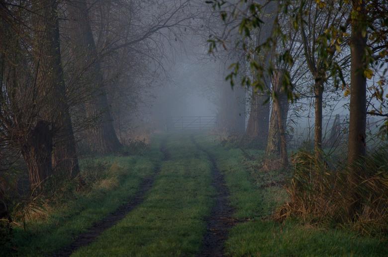 Mistig paadje - Een herfstachtig boeren weggetje in de mist