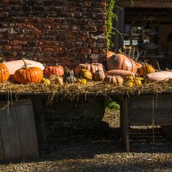 Een tafel vol herfstgevoel.