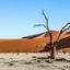 Deadvlei, Namib Woestijn, Namibie