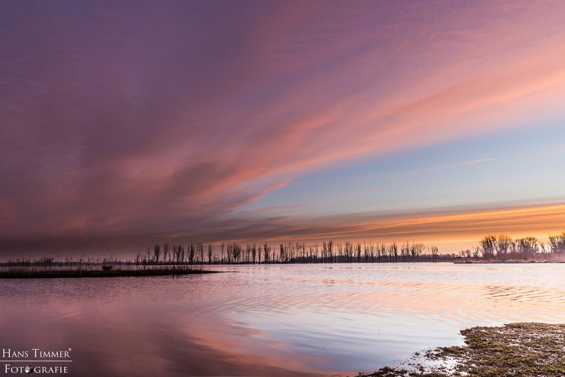Biesbosch sunrise