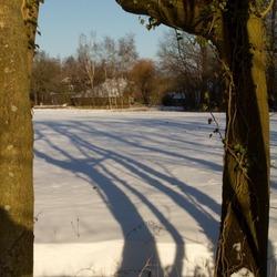 winters licht geeft winterse schaduw