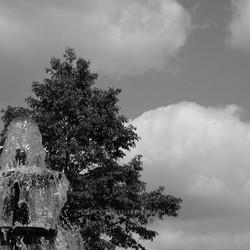 fontain-tree-cloud