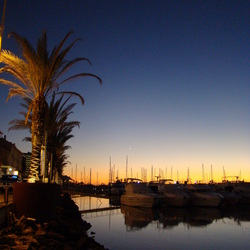 vilamoura harbour by night
