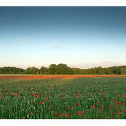 Brabants Landschap.