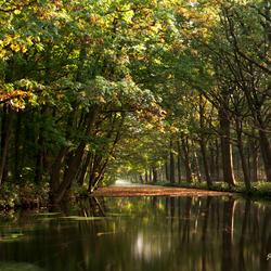 The secrets of autumn