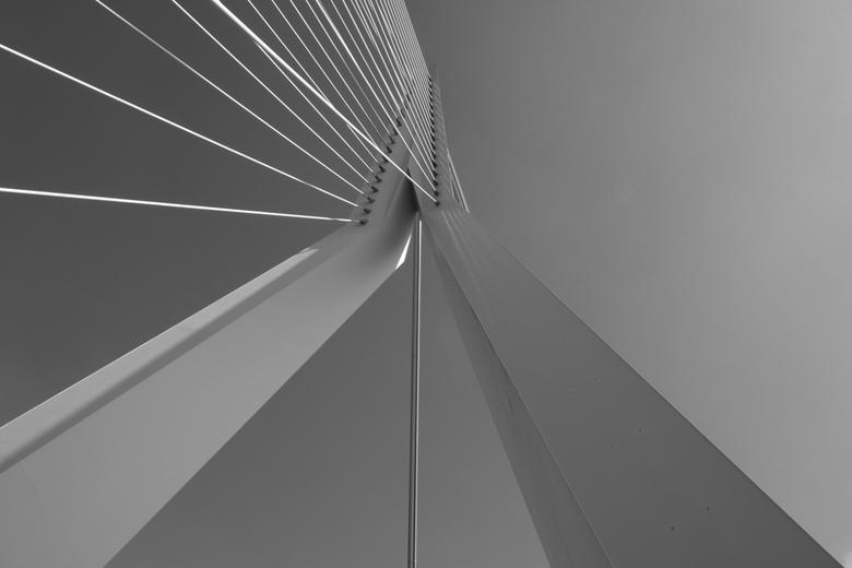 Erasmusbrug 01 - De Erasmusbrug in Rotterdam. Bijna recht naar boven geknipt.