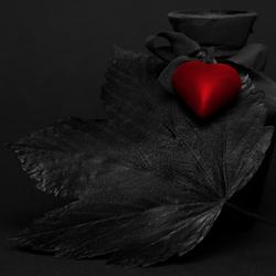Liefde is sterker dan de dood