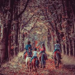 Toen was de herfstfee in het land ...