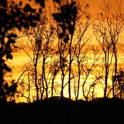 Sunrise in the AWD