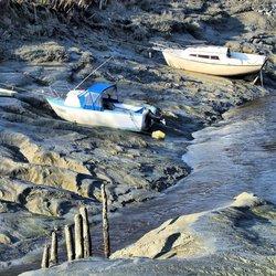 Help,de zee loopt leeg (4)