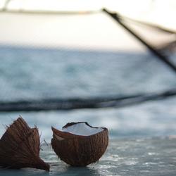 Hangmat en kokosnoten