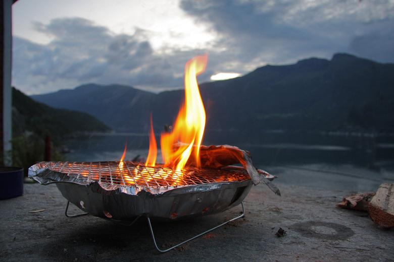 Verse vis - Mijn zoon had een kleine kabeljauw aan de haak,en binnen een half uur had hij hem op het vuur,smullen maar.