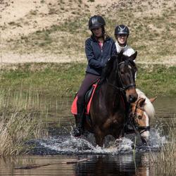 Paarden en water