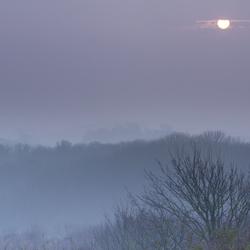 duinen in de mist