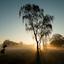 Wierden - zonsopkomst