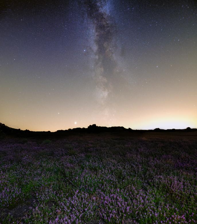 Melkweg boven de Heide - Waar het overdag vol staat met fotografen op de heide, stond ik nu moederziel alleen. Genieten van de rust, geluiden van voge