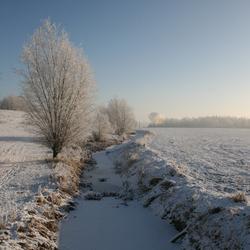 wintersloot met boom