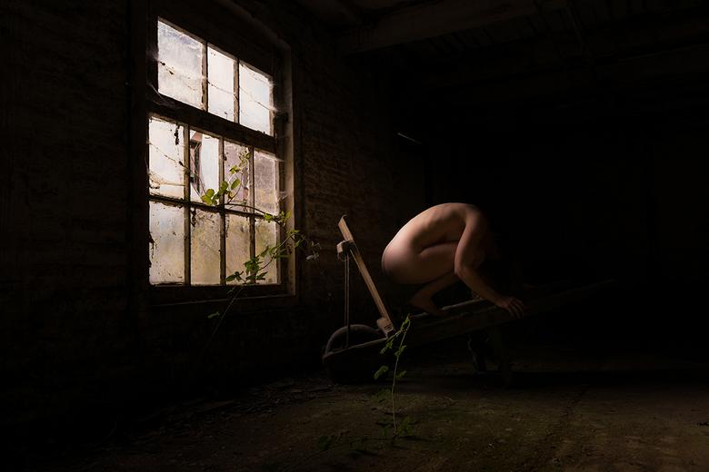Draag de Schaduw - De laatste tijd ben ik me meer gaan verdiepen in andere vormen van de fotografie, waaronder naaktfotografie. Een studio heb ik niet