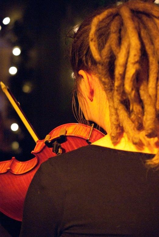 violiste - violiste van de band Hoppah! tijdens een optreden in cafe 'het Meisje'.