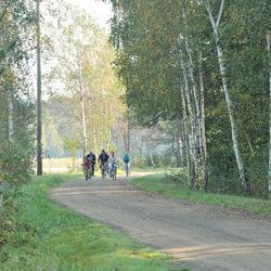 Fietsers in het Spreewald