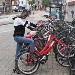 Haarlems  Beeld
