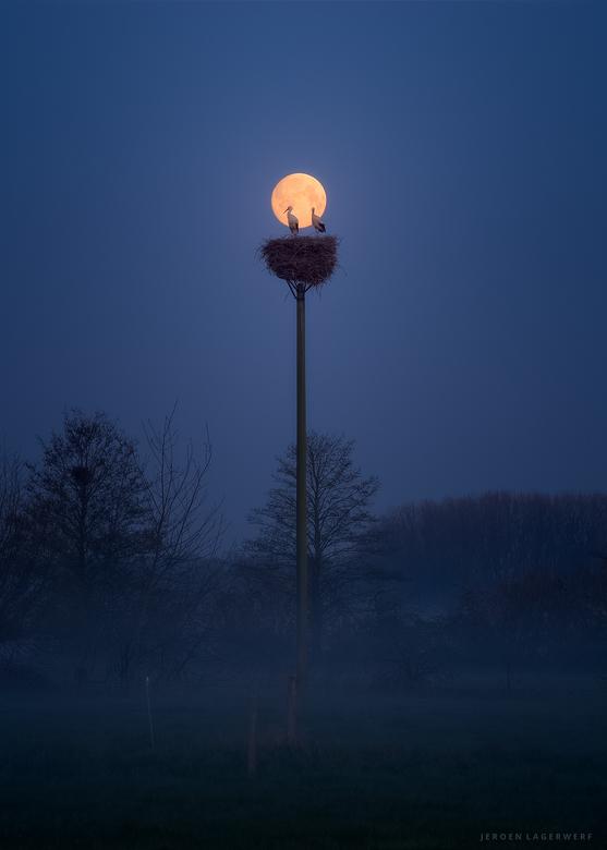 Volle maan - Volle maan, &#039;s morgens vroeg, voor zonsopkomst bij het Ooievaarsnest.<br /> <br /> Exif: 200mm, 1/15s, F9, ISO 400