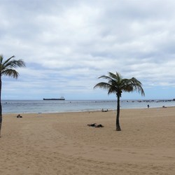 P1060725 Tenerife  N Zuidkant  strand plaatsje  Playa de las Teresitas 21 mei 2019