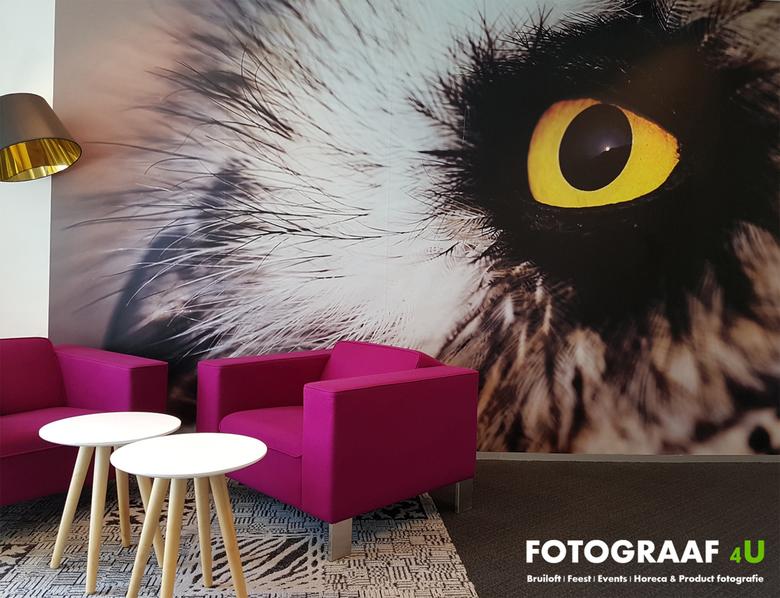 Fotograaf4U - Interieur Fotografie - Fotograaf4U Interieur Fotografie