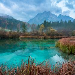 Het Zelenci natuur reservaat
