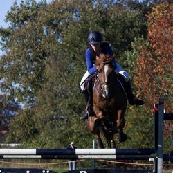 Paardencross 5