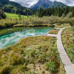 Zelenci Reservat