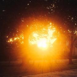 Lente Sunset