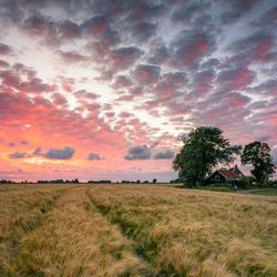 Friesland verlicht
