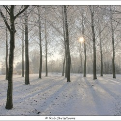 Winterwonderland bij Rijkerswoerd