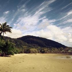 Cape Tribulation - Australia