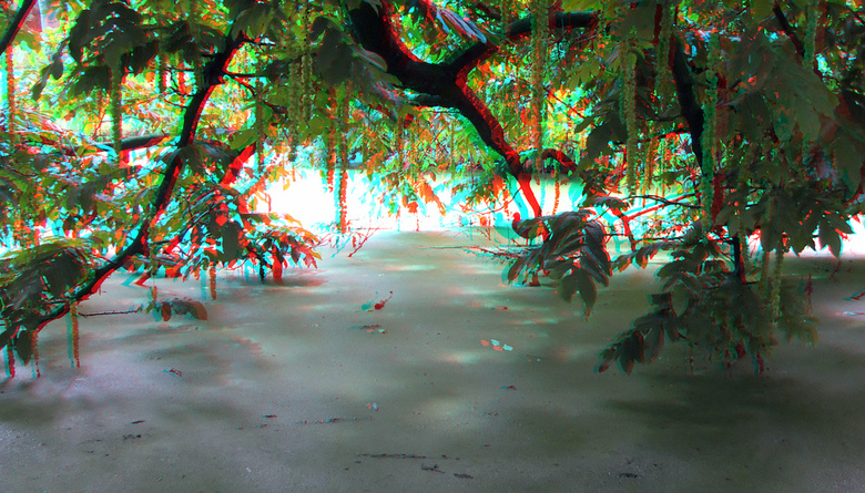 Wantijpark Dordrecht 3D - Wantijpark Dordrecht 3D<br /> anaglyph stereo red/cyan