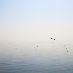 uitkijkje over de waddenzee