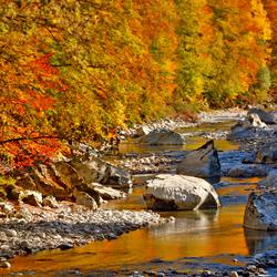 Herfst kleuren.............