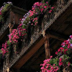 Fleurige balkons