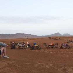 Zagora woestijn Marokko